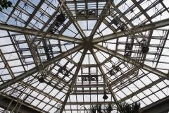 熱帯温室(大温室)天井